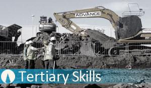 Tertiary Skills